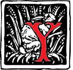 Crane_letter_Y_variant